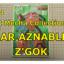 1/144 CHAR Z'GOK ガンプラ 旧キット シャア専用 ズゴック