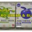 HAROPLA HARO GREEN BLUE ハロプラ ハロ