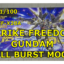 MG STRIKE FREEDOM FULL BURST フルバースト