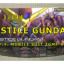 GUNPLA RG JUSTICE ガンプラ ジャスティス